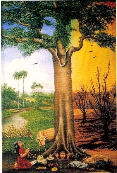 Священное Дерево Сейба. Продолжение 37