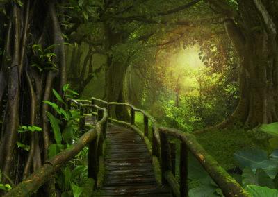 Деревья – Лучшие Наставники По Внутреннему Безмолвию.