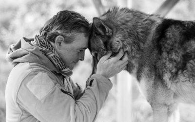 Четыре вещи, которым меня научили Волки (вы тоже можете этому научиться)